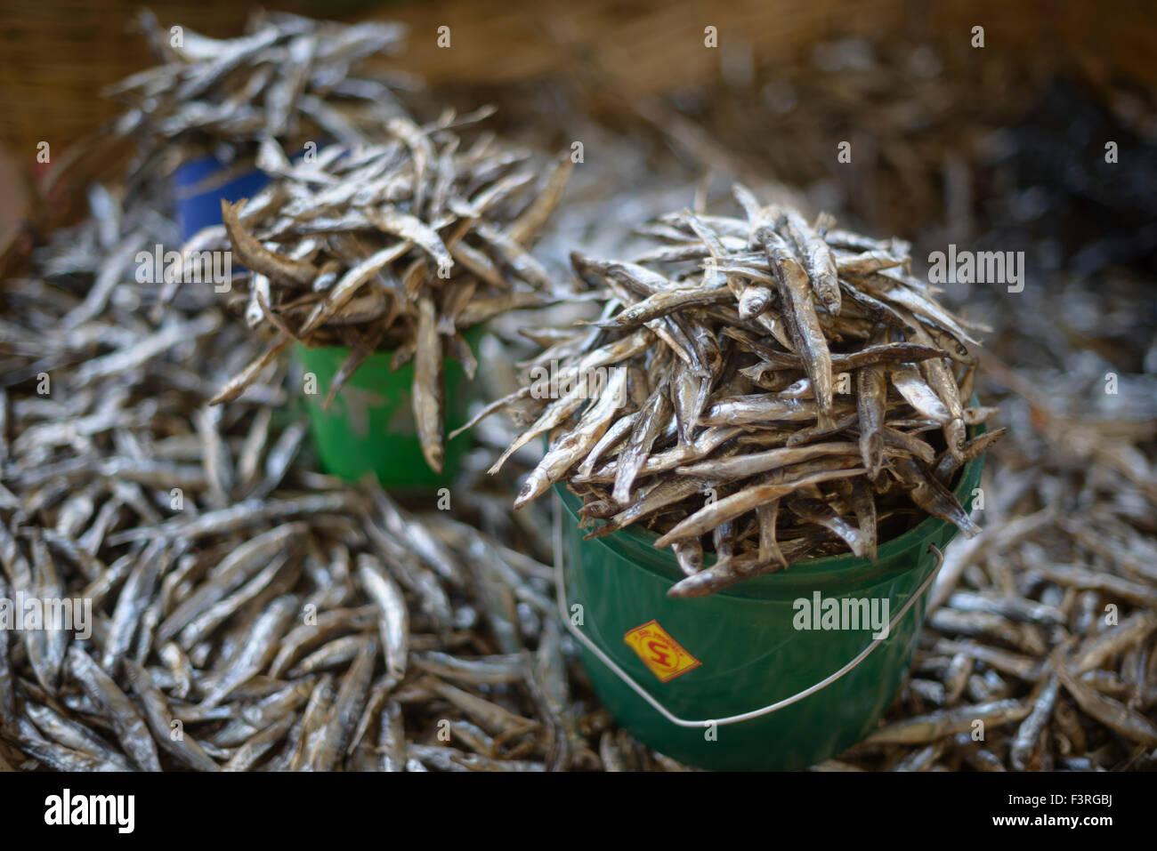 Marché aux poissons en plein air au bord du lac Malawi, Malawi, Afrique Banque D'Images