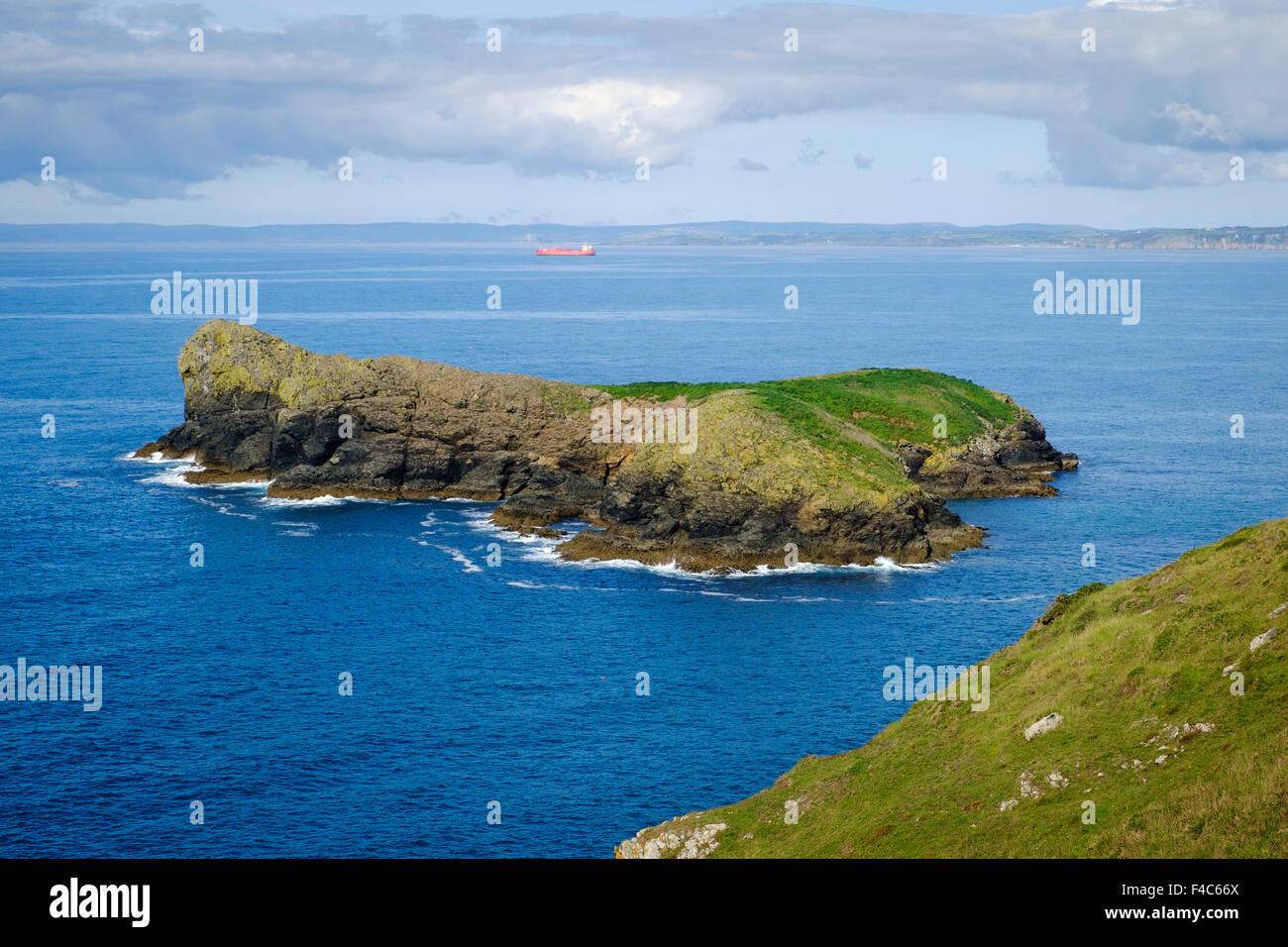 Meneau Island, le sanctuaire des oiseaux, meneau, Cornwall, Angleterre, Royaume-Uni - de la South West Coast Path Photo Stock