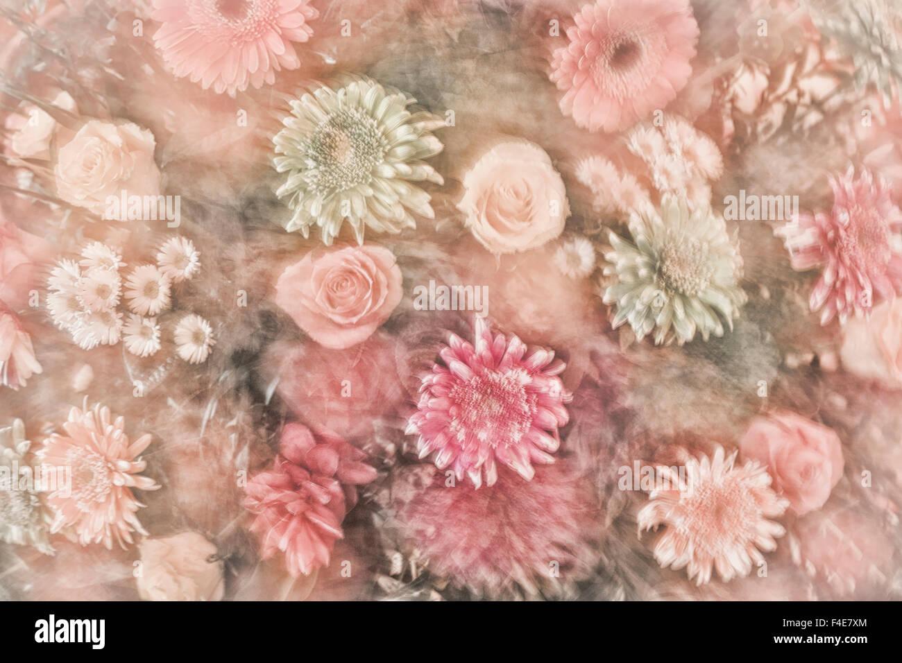 Le Mexique, Rancho La Puerta. Résumé impression d'un arrangement floral. En tant que crédit: Photo Stock