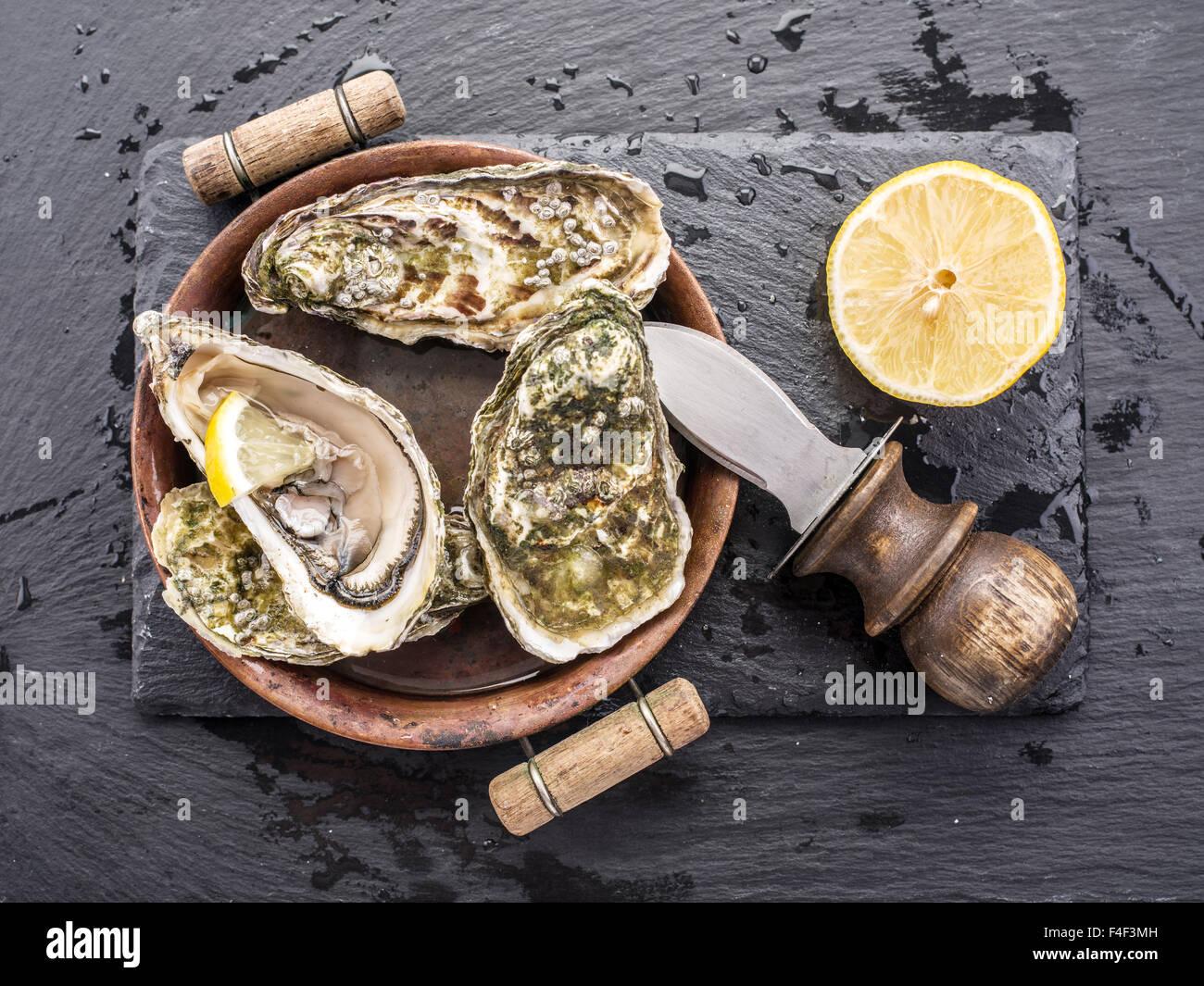 Les huîtres crues sur le graphite. Photo Stock