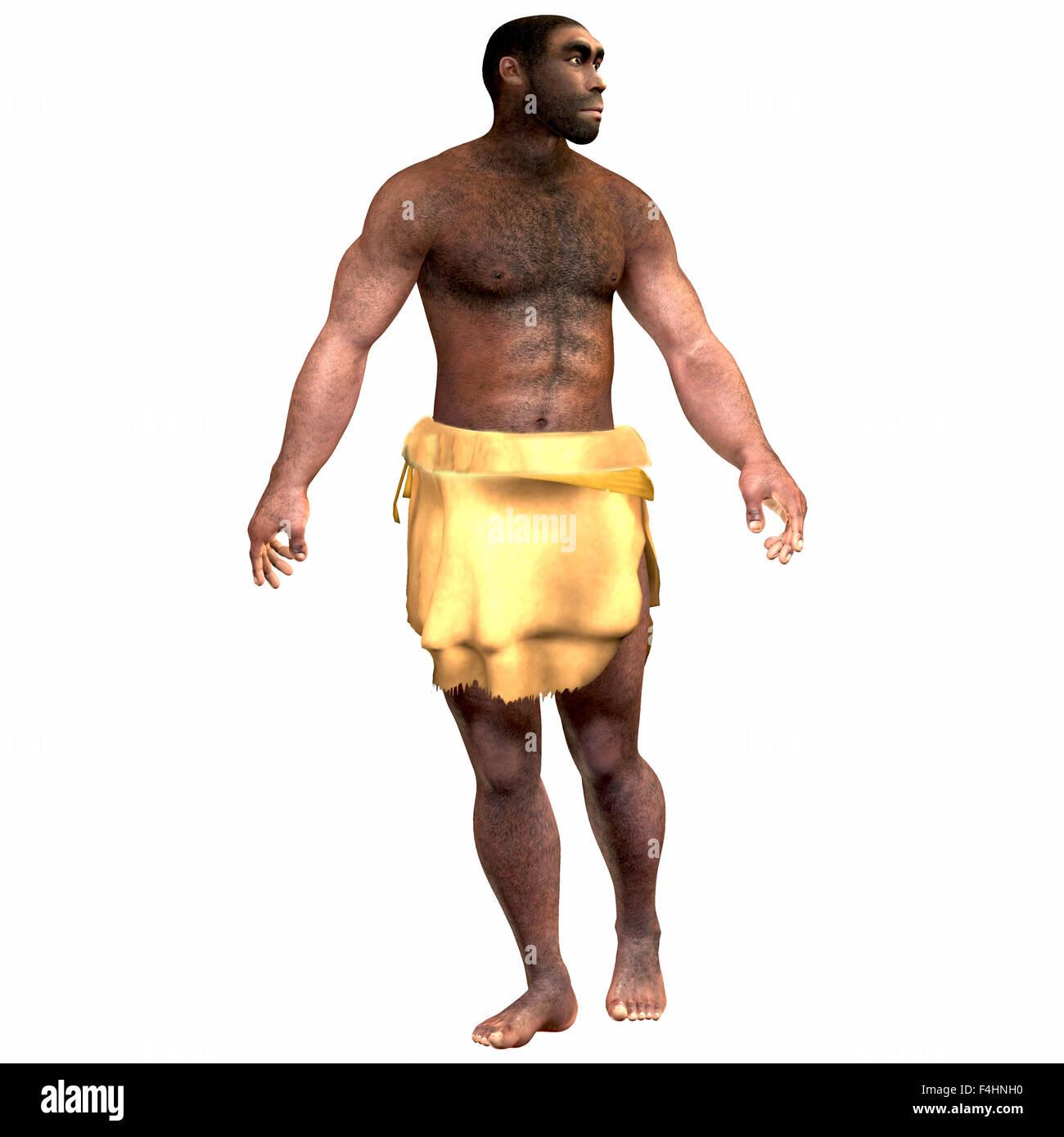 L'Homo Erectus est une espèce de l'espèce humaine qui a vécu durant la période pléistocène en Eurasie et en Afrique. Banque D'Images