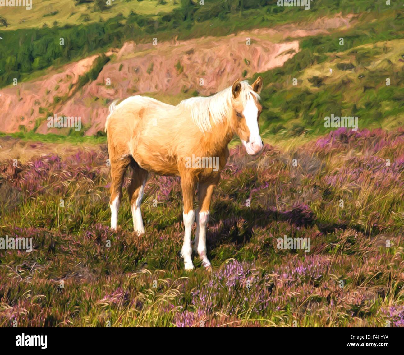 Avec un poney crème dun nez blanc sur une colline avec purple heather illustration comme la peinture à Photo Stock