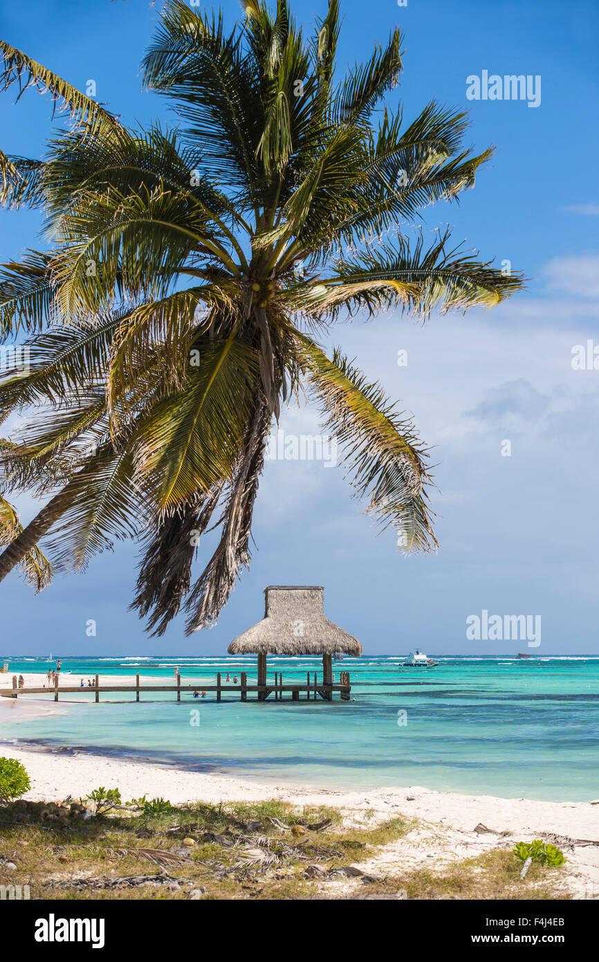 Jetée en bois avec cabane de chaume, Playa Blanca, Punta Cana, République dominicaine, Antilles, Caraïbes, Amérique Centrale Banque D'Images