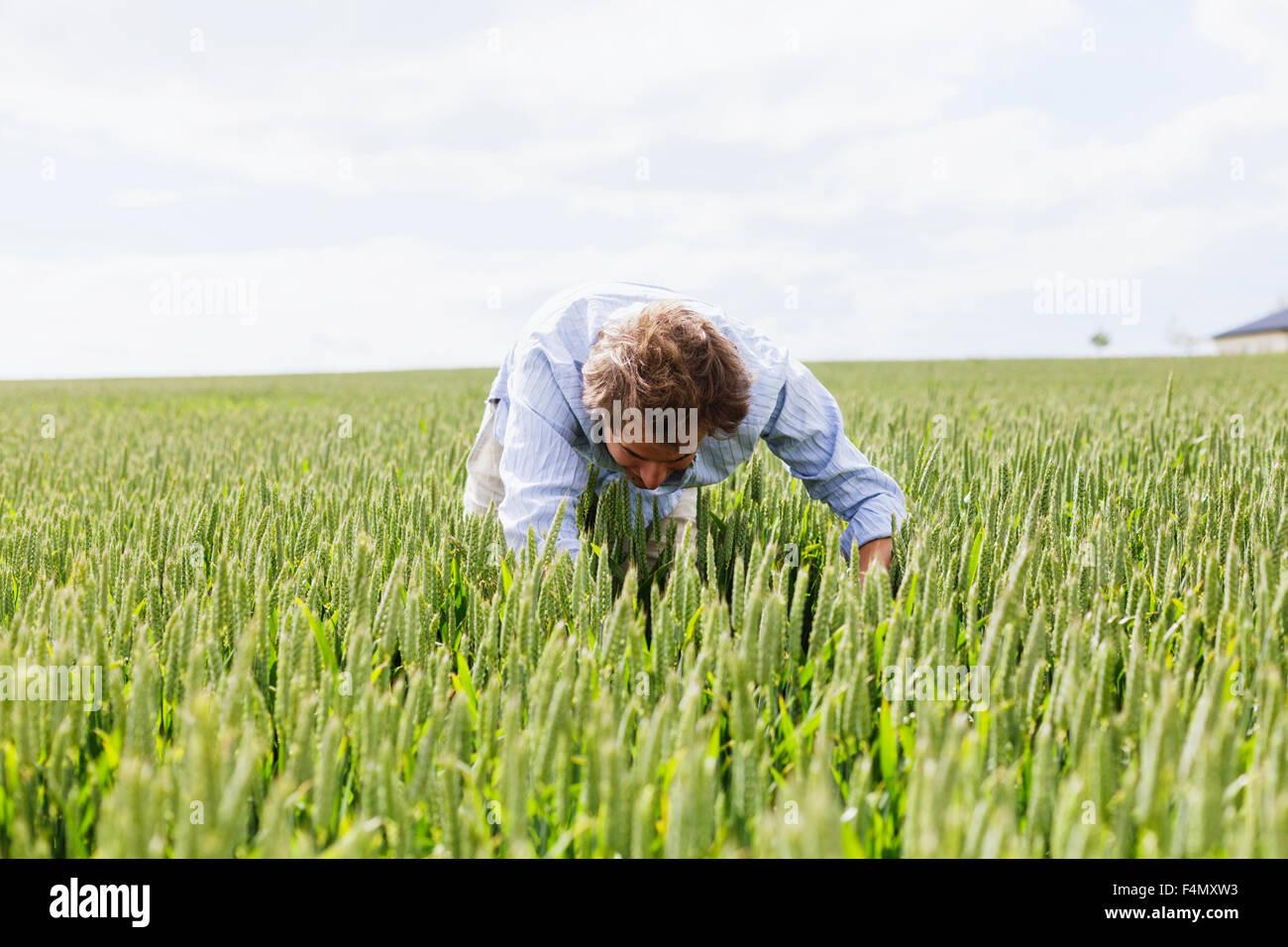 Jeune homme recherche dans domaine against sky Photo Stock