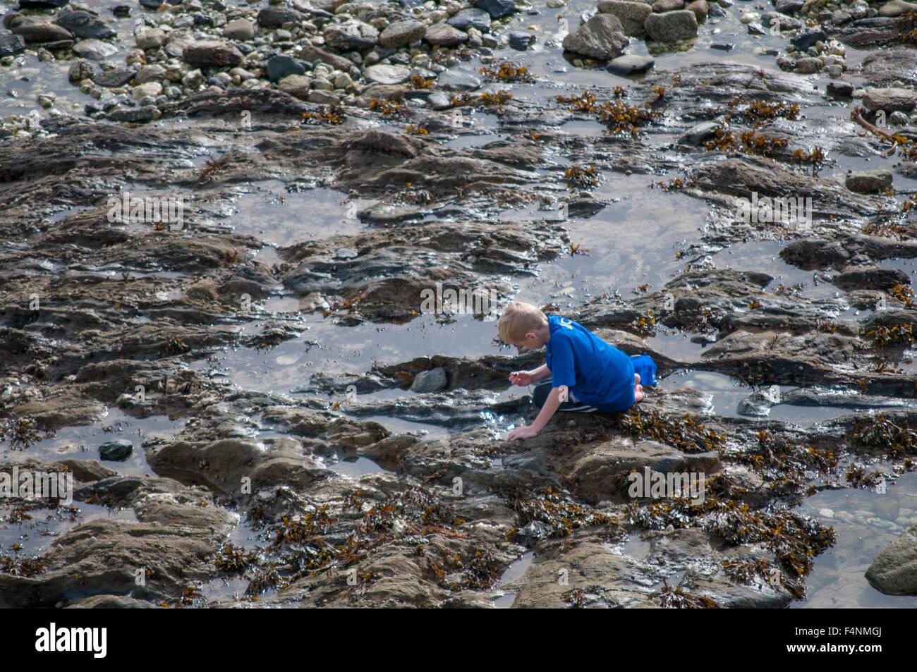 Un garçon de pêche dans une piscine dans les rochers à Cornwall Photo Stock