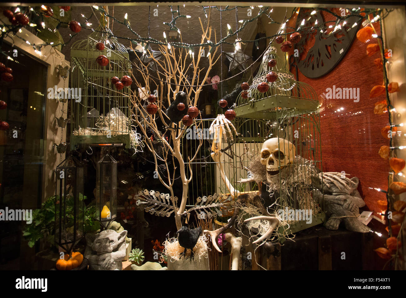 d coration halloween vitrine banque d 39 images photo stock 89233985 alamy. Black Bedroom Furniture Sets. Home Design Ideas