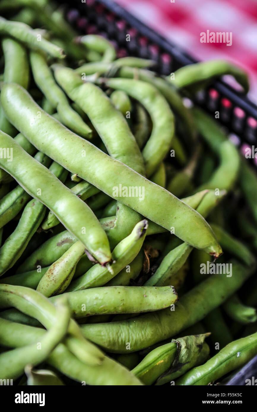 Haricots verts crus dans le pod Banque D'Images