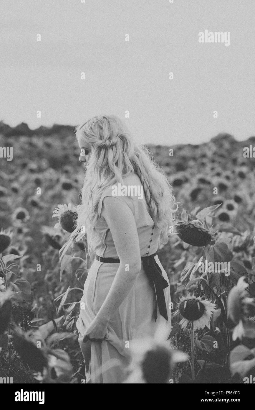 Belle jeune femme dans un champ de tournesol à l'heure d'or Banque D'Images