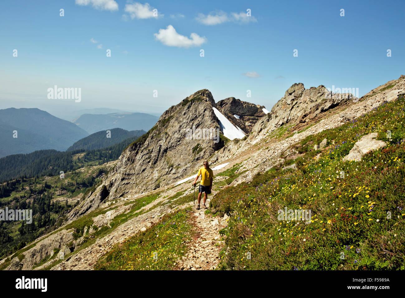 WASHINGTON - Randonneur sur la route entre Tin Pan Gap et trois doigts Lookout dans le Boulder River Wilderness Photo Stock