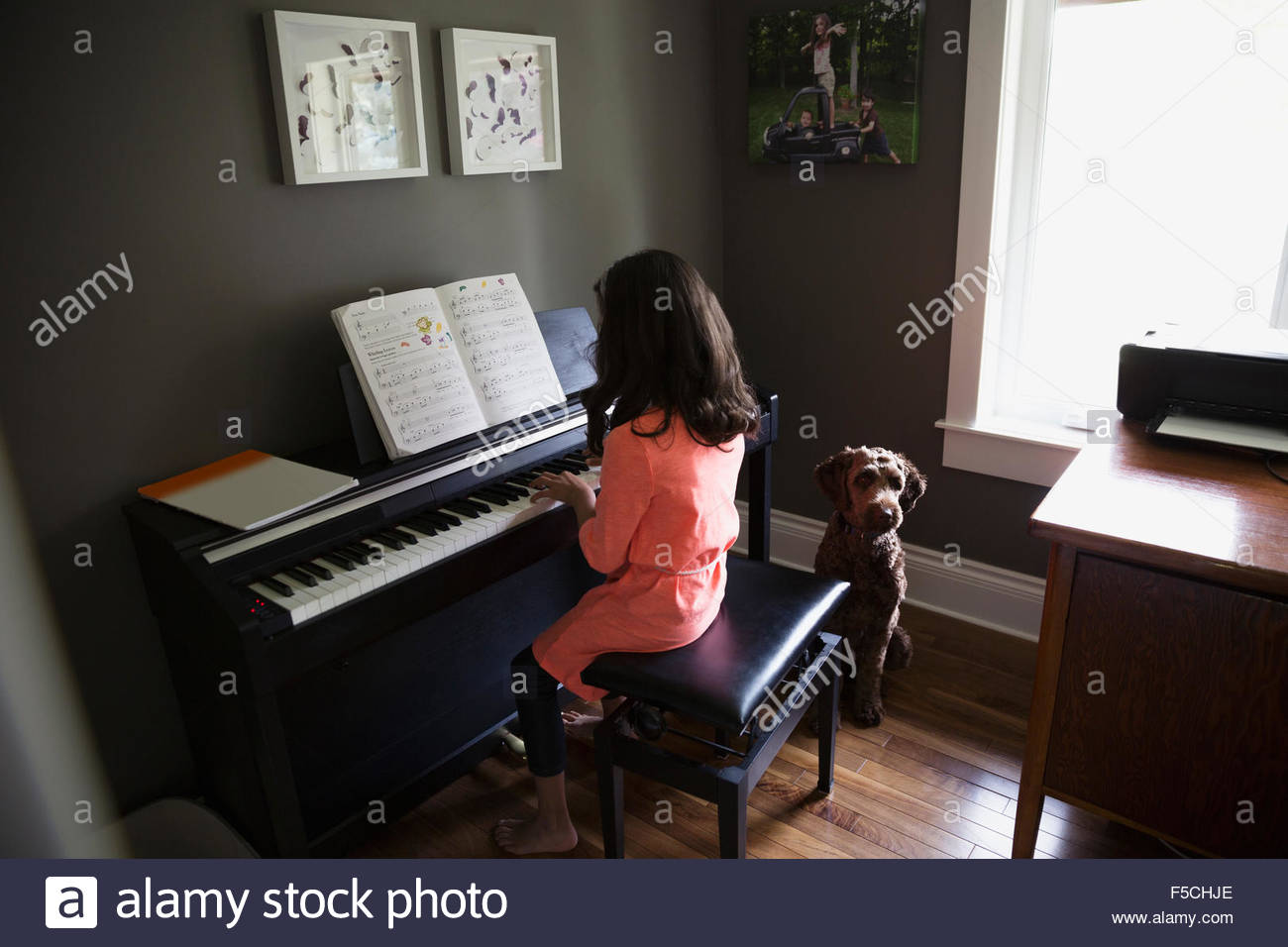 Chien en attente d'girl playing piano Photo Stock