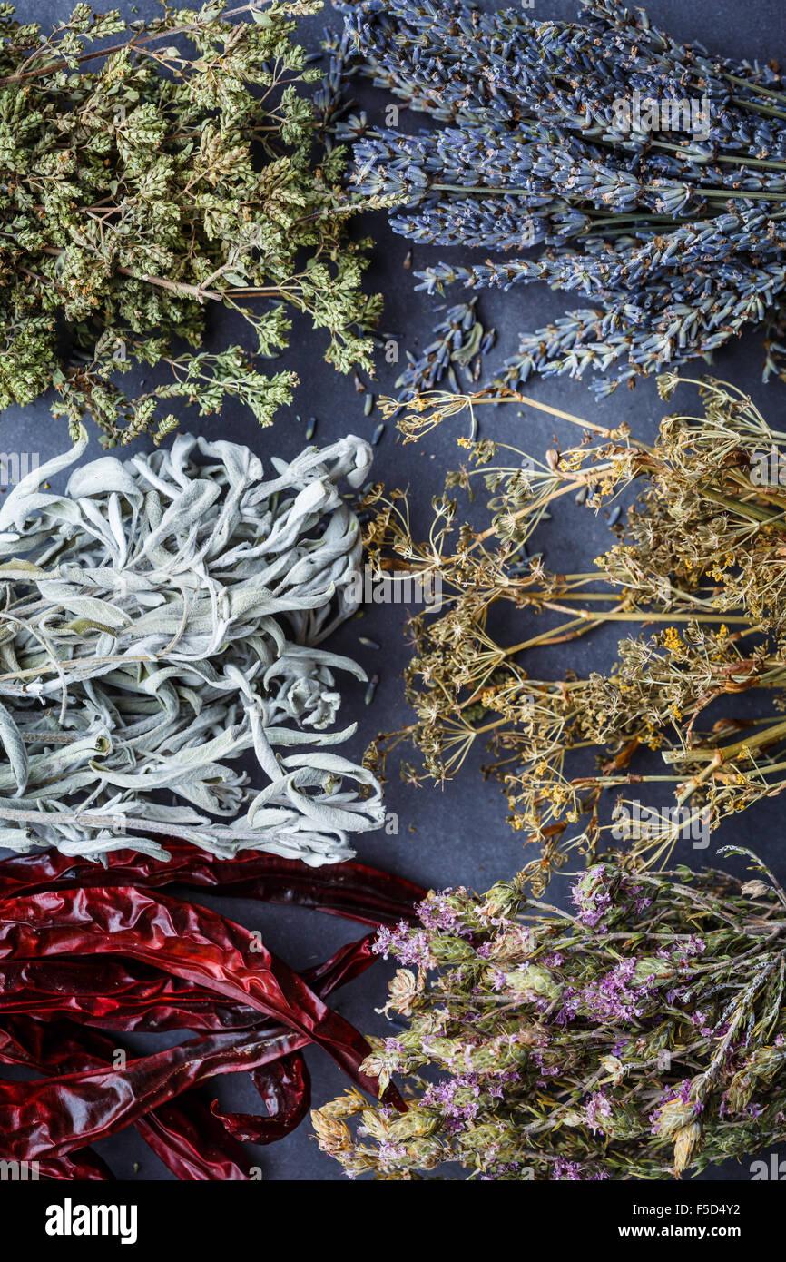 Herbes séchées sur fonds sombres Photo Stock