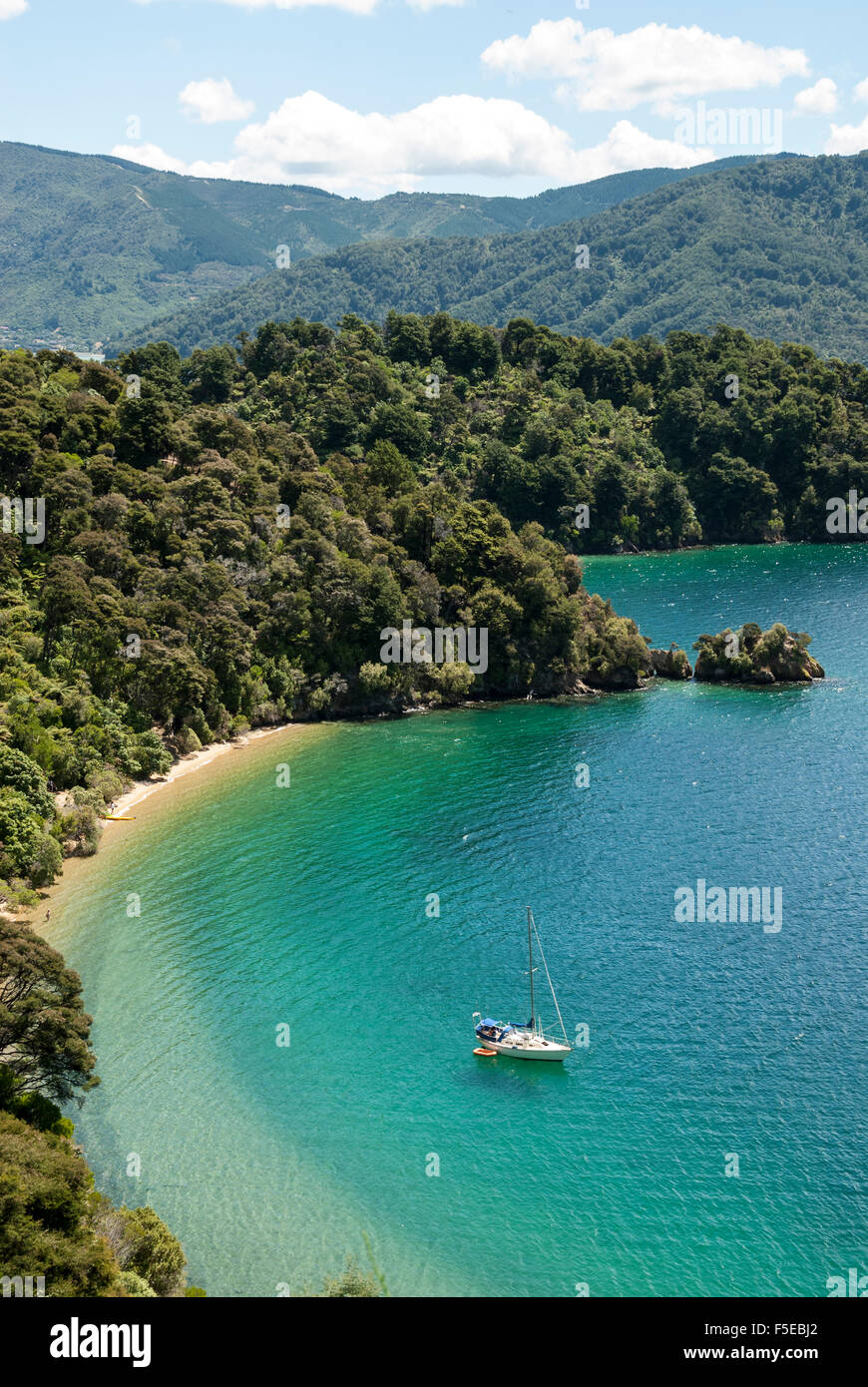 Okiwa Bay, Marlborough Sounds, île du Sud, Nouvelle-Zélande, Pacifique Photo Stock