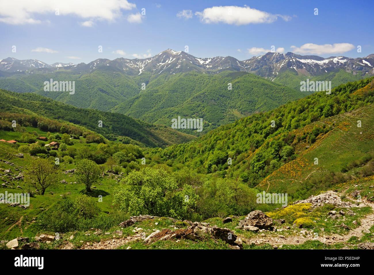 Fuente De, Picos de Europa, Parque Nacional de los Picos de Europa, Asturias, Cantabria, Spain, Europe Photo Stock