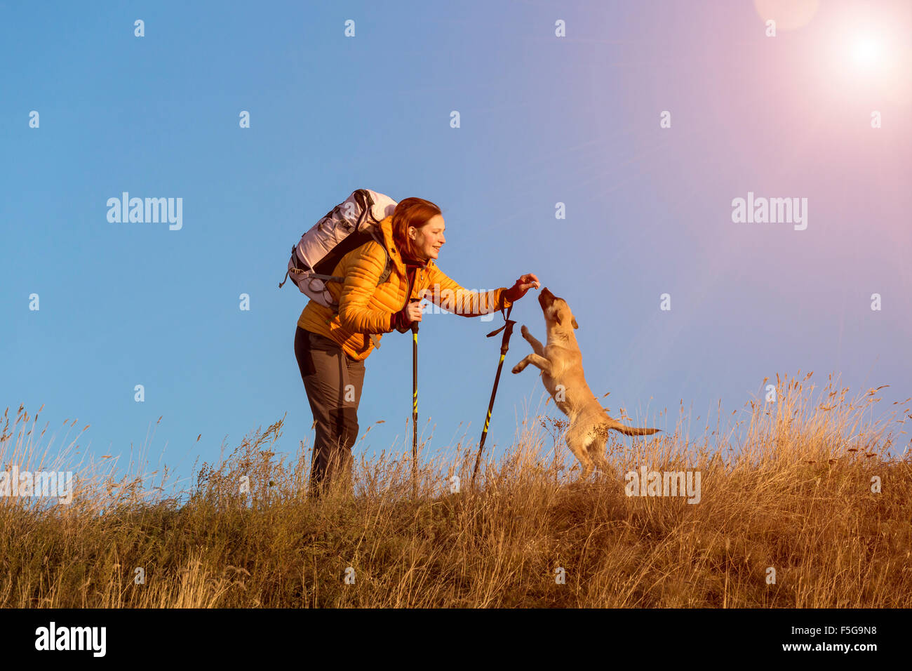 Female hiker and dog on pathway Photo Stock
