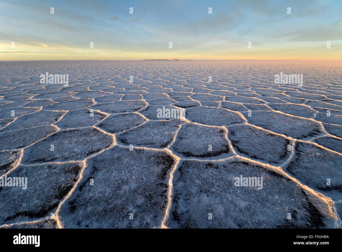 Structure alvéolaire sur Salar de Uyuni, sel, lumière du matin, altiplano, lipez, Bolivie Photo Stock