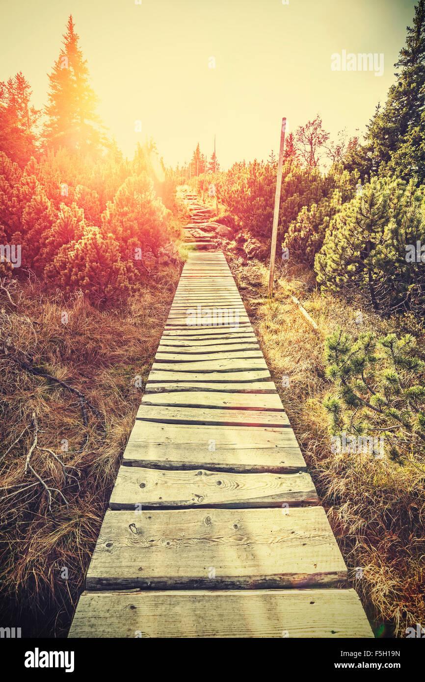Stylisé rétro en bois montagne chemin dans la montagne au coucher du soleil, effet flare, Karpacz, Pologne. Photo Stock