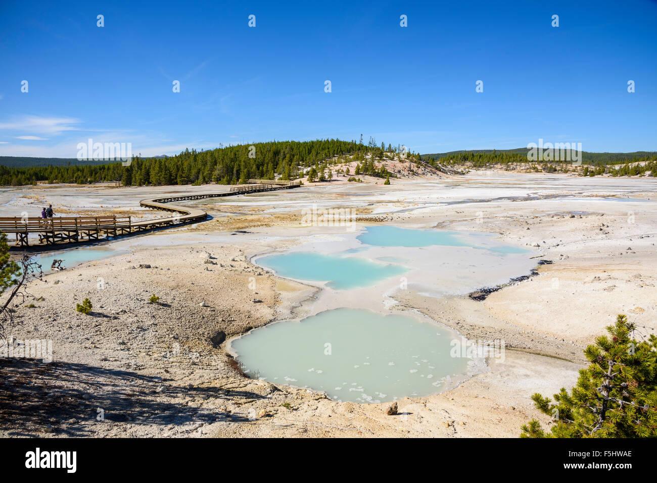 Bassin en porcelaine, Norris Geyser Basin, Parc National de Yellowstone, Wyoming, USA Photo Stock
