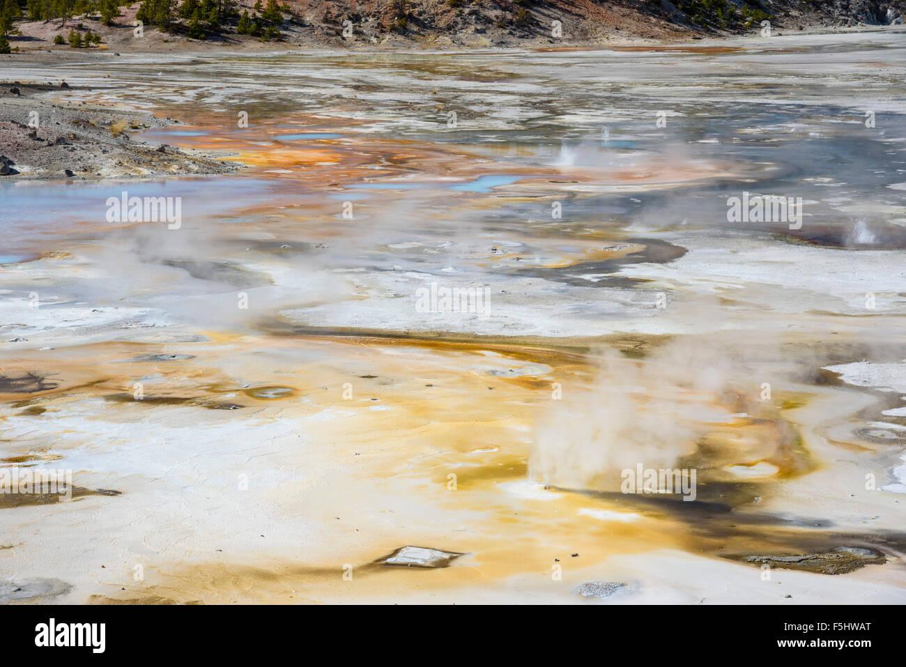 Ressorts de porcelaine, Norris Geyser Basin, Parc National de Yellowstone, Wyoming, USA Photo Stock