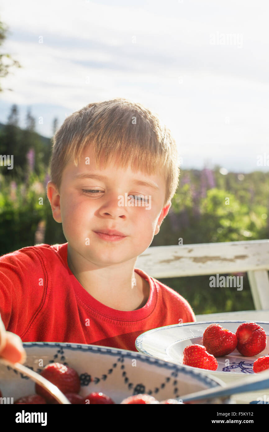 La Suède, Best Western Eden, Jarvso, Boy (4-5) de manger les fraises au jardin Photo Stock