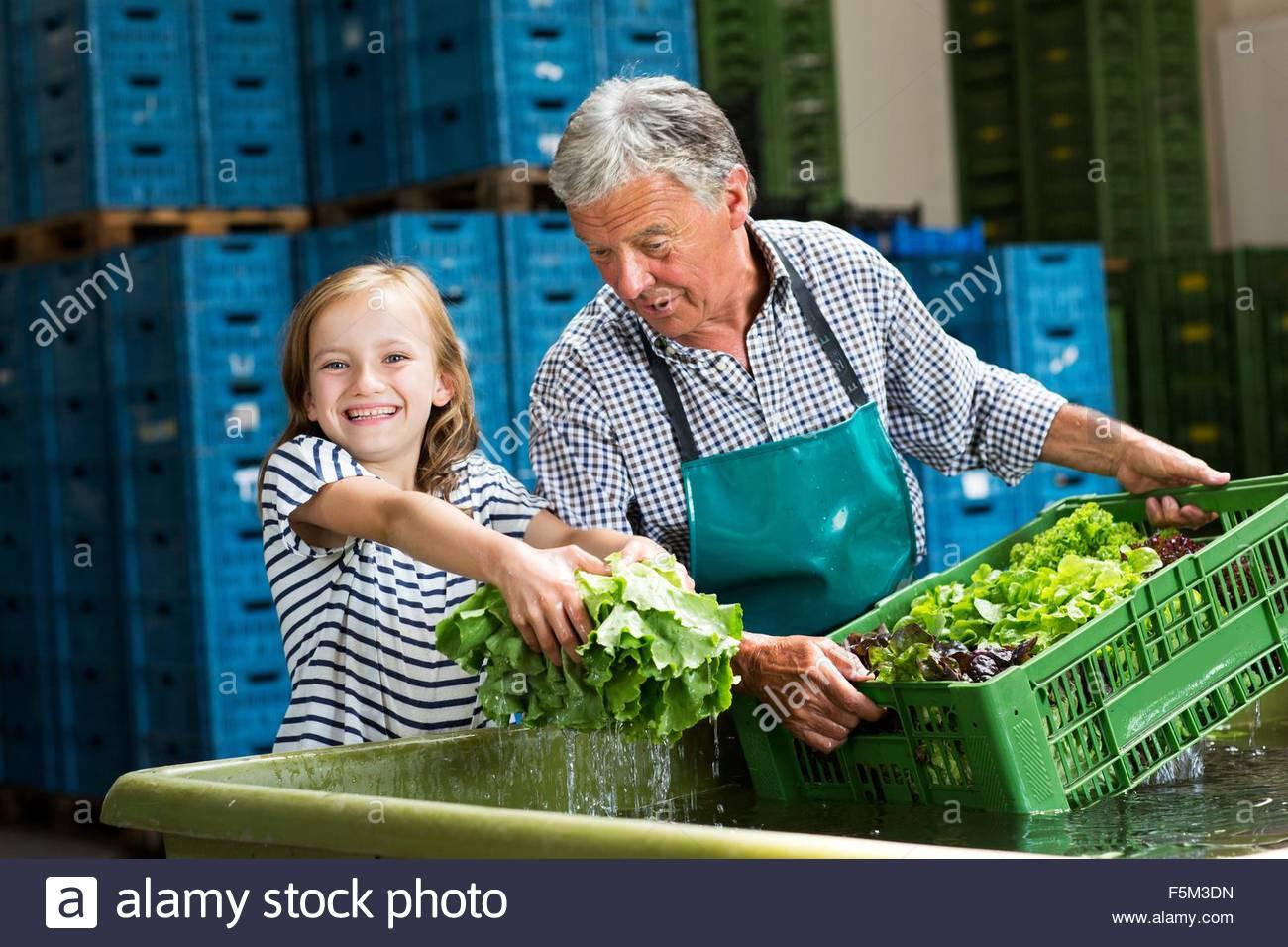 Grand-père et sa petite-fille lave-caisses de laitue, smiling at camera Photo Stock