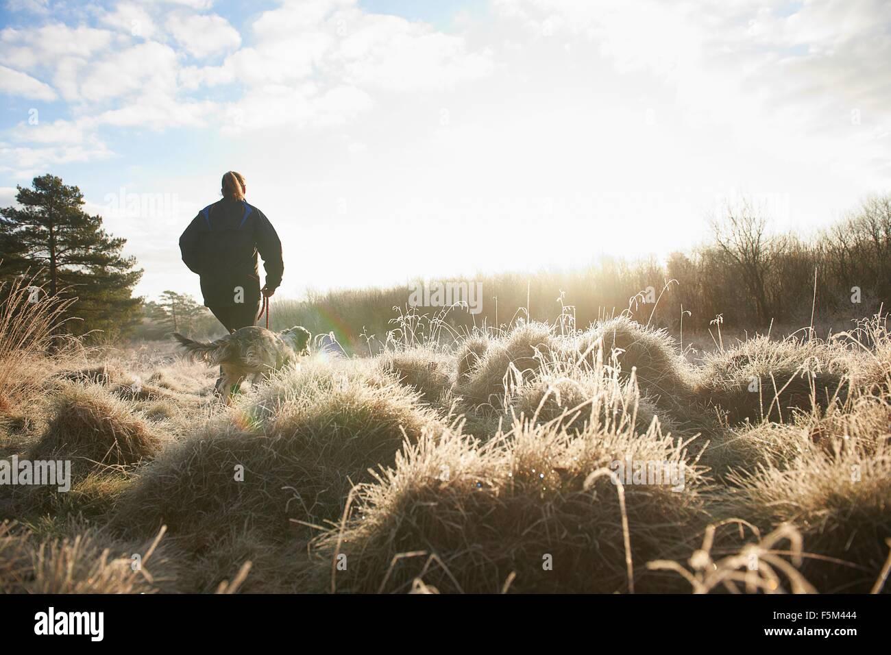 Vue arrière de l'angle faible mature woman walking dog sur les herbages Photo Stock