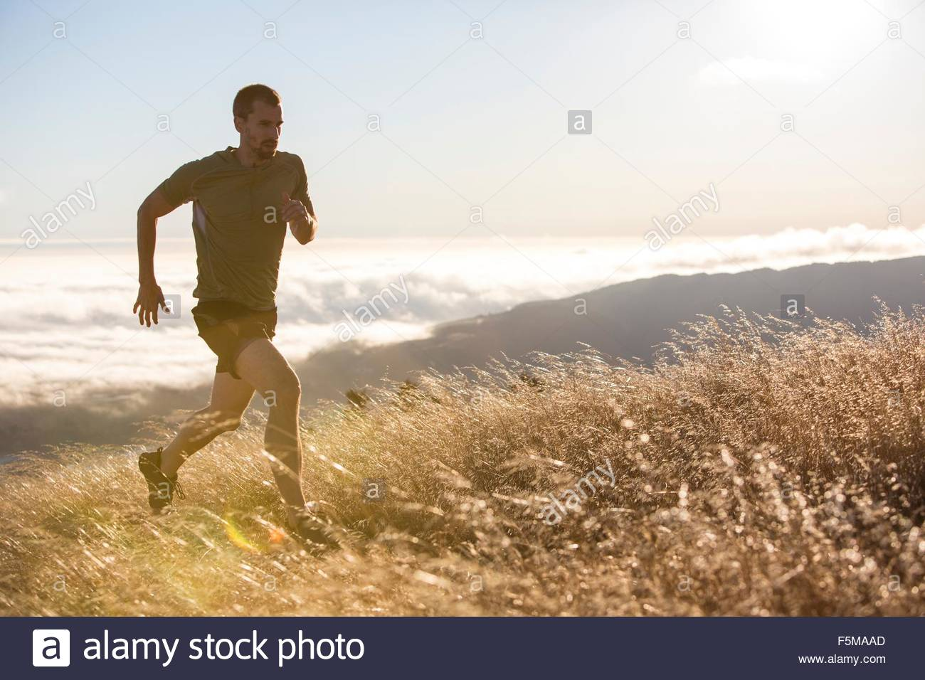 L'homme en marche, mer en arrière-plan, Marin, en Californie, USA Photo Stock