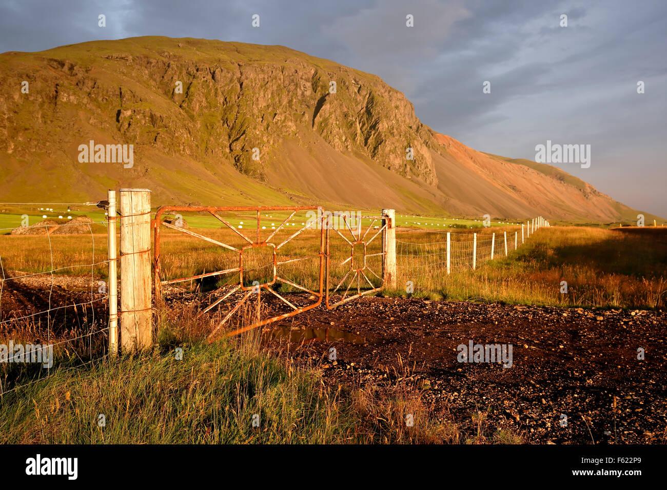 Paysage de montagne et ferme près de hofn, Islande Photo Stock