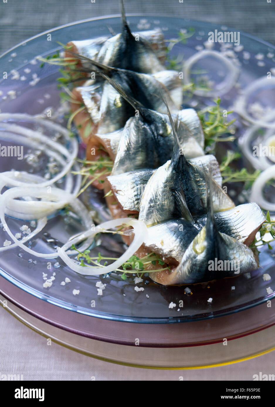 Sardines farcies et roulées Banque D'Images