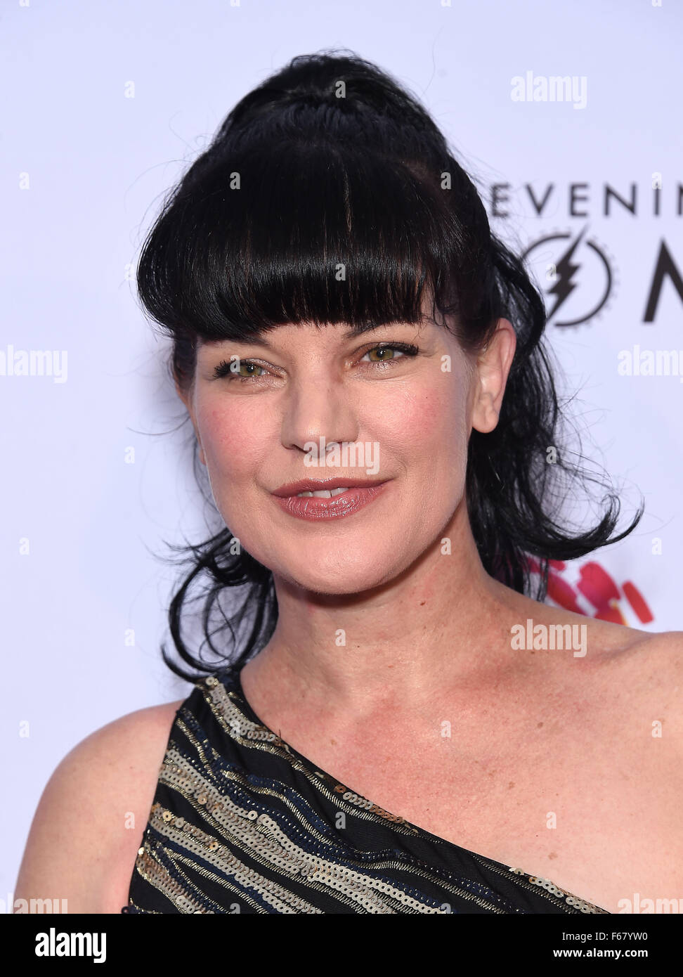 Pauley perrette abby sciuto think