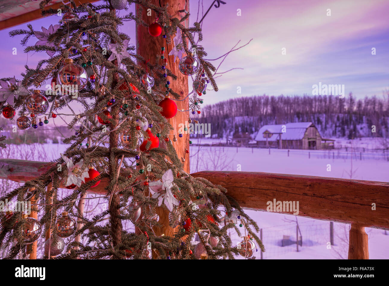 Arbre de Noël sur log house porche, région de Cariboo, en Colombie-Britannique, Canada Photo Stock