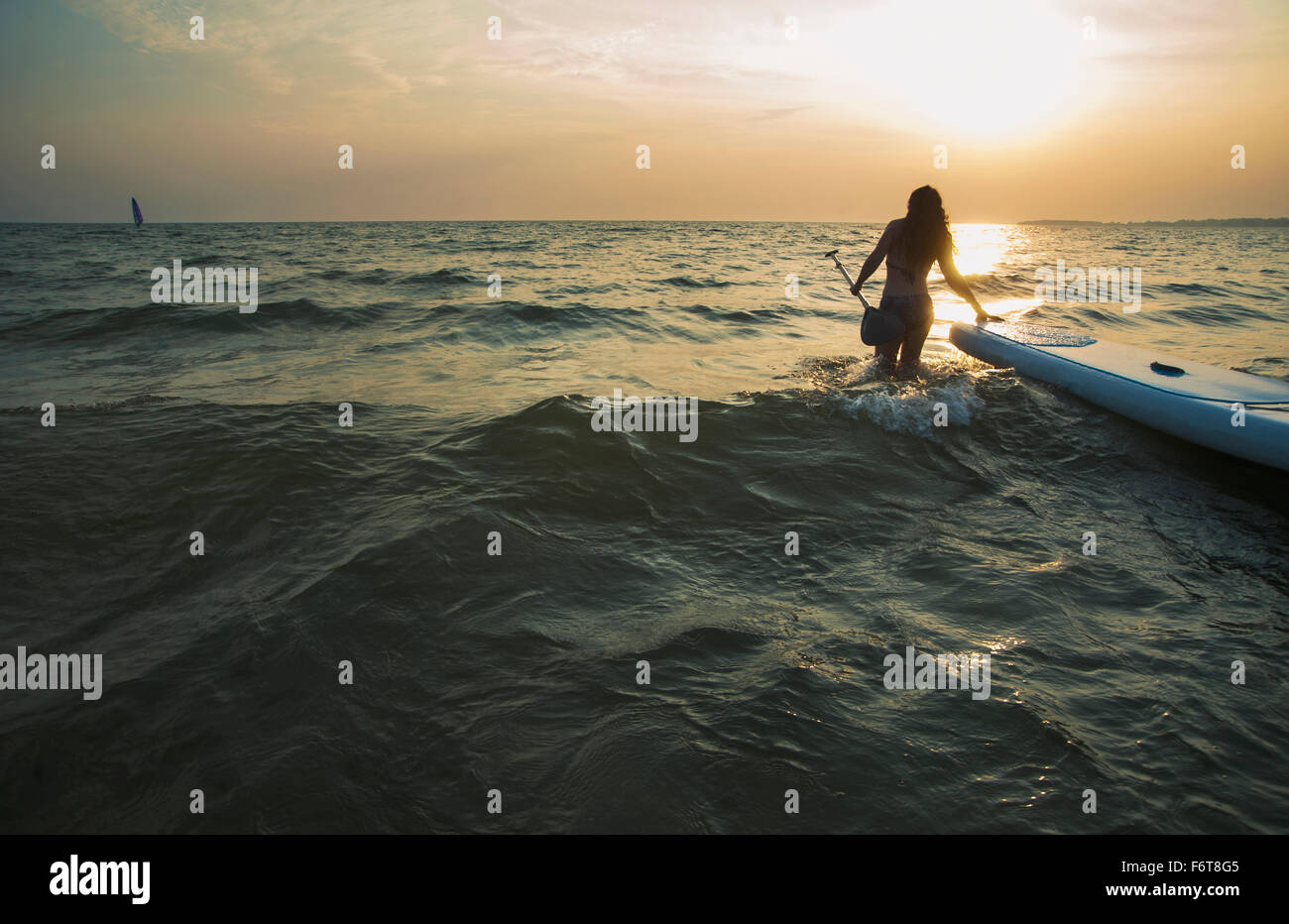 Woman pulling paddleboard dans le lac Photo Stock