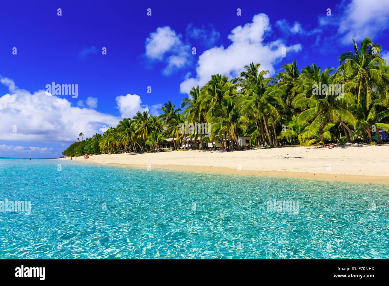 Plage sur l'île tropicale d'eau bleue et claire. Dravuni Island (Fidji). Photo Stock