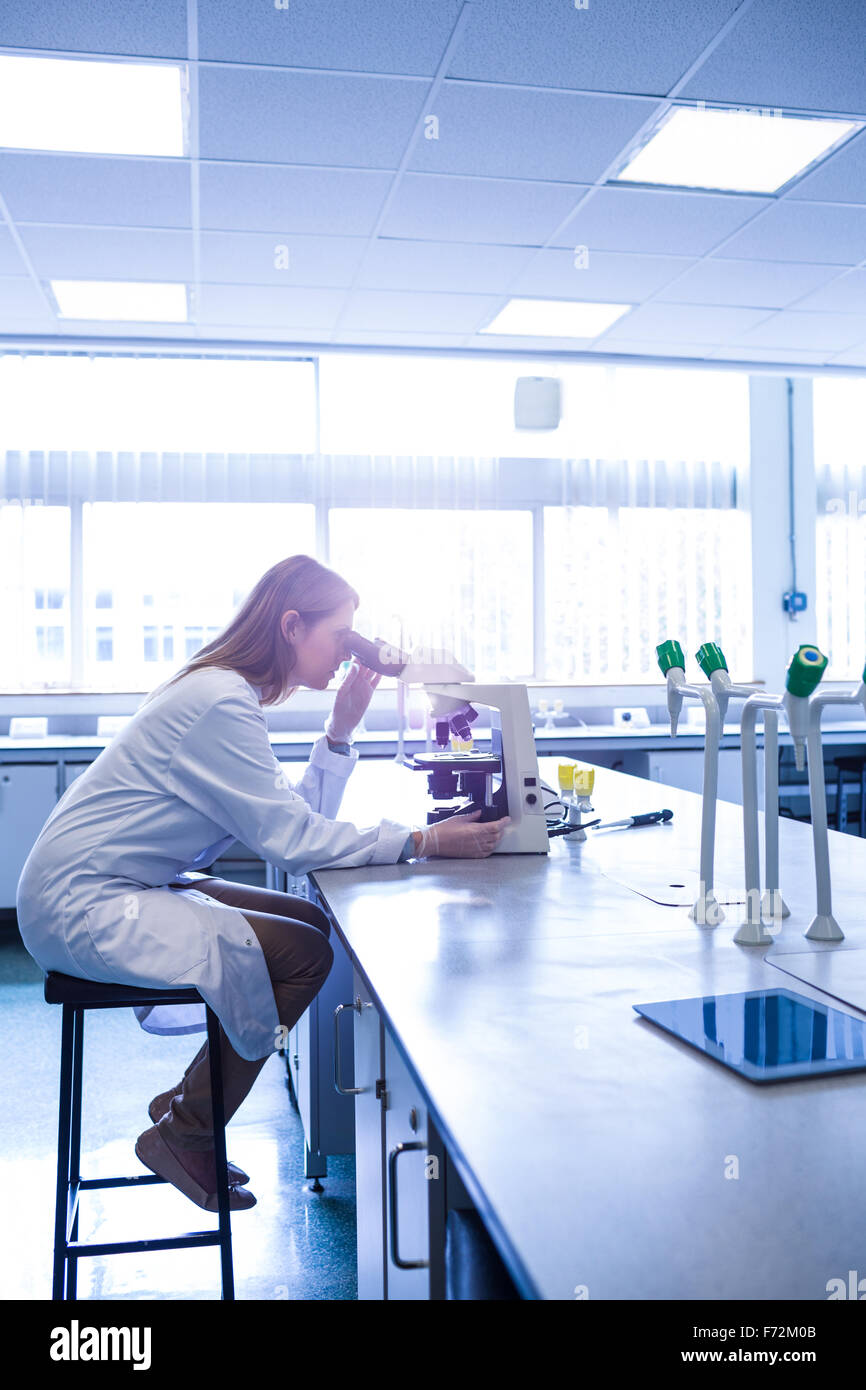 Expert scientifique en travaillant avec un microscope in laboratory Photo Stock