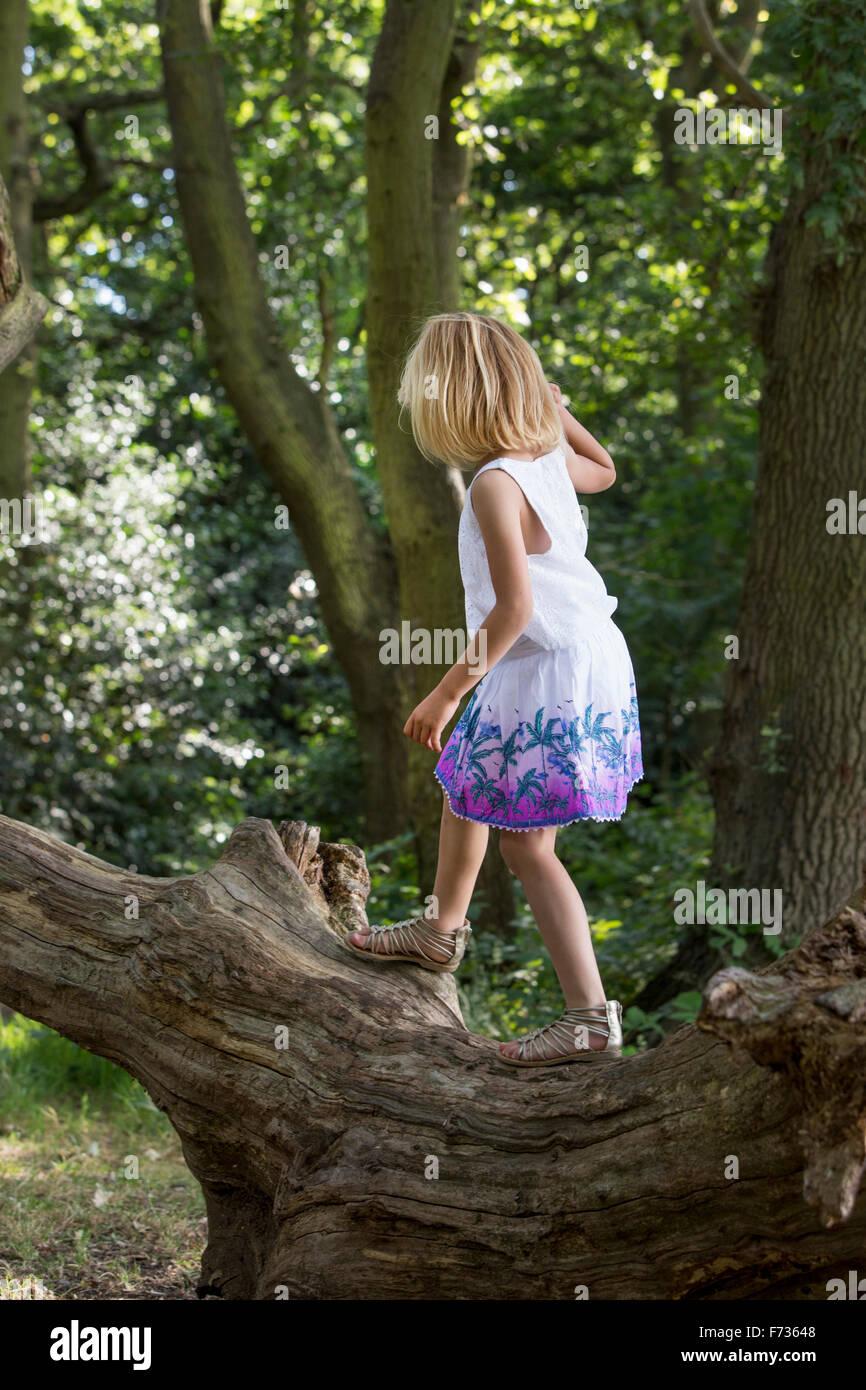 Jeune fille en équilibre sur un arbre dans une forêt. Photo Stock