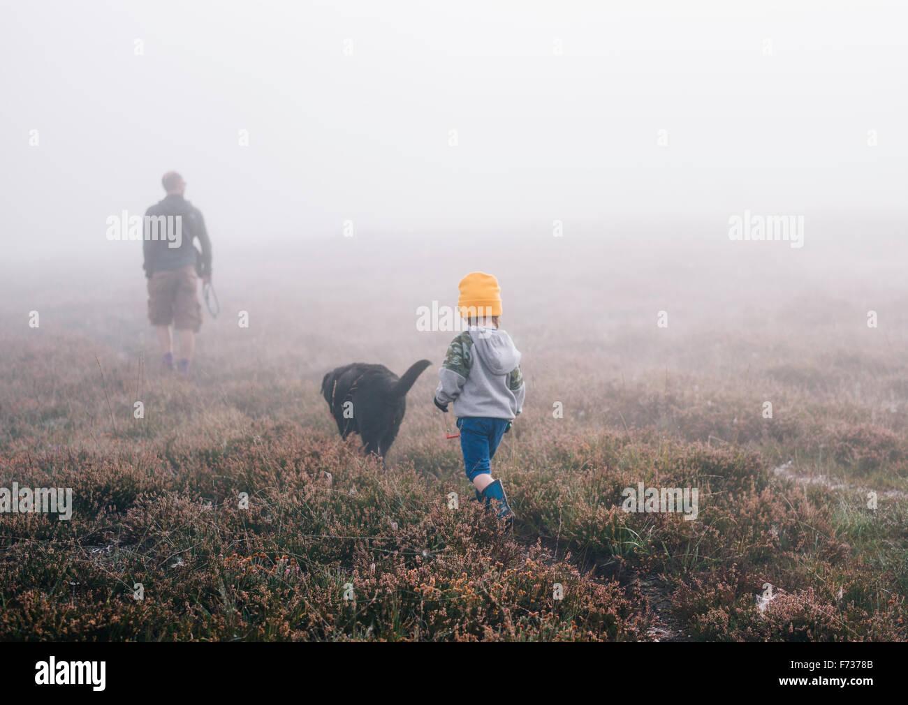 Un adulte et un enfant avec un chien, marchant à travers la bruyère en automne brouillard. Banque D'Images