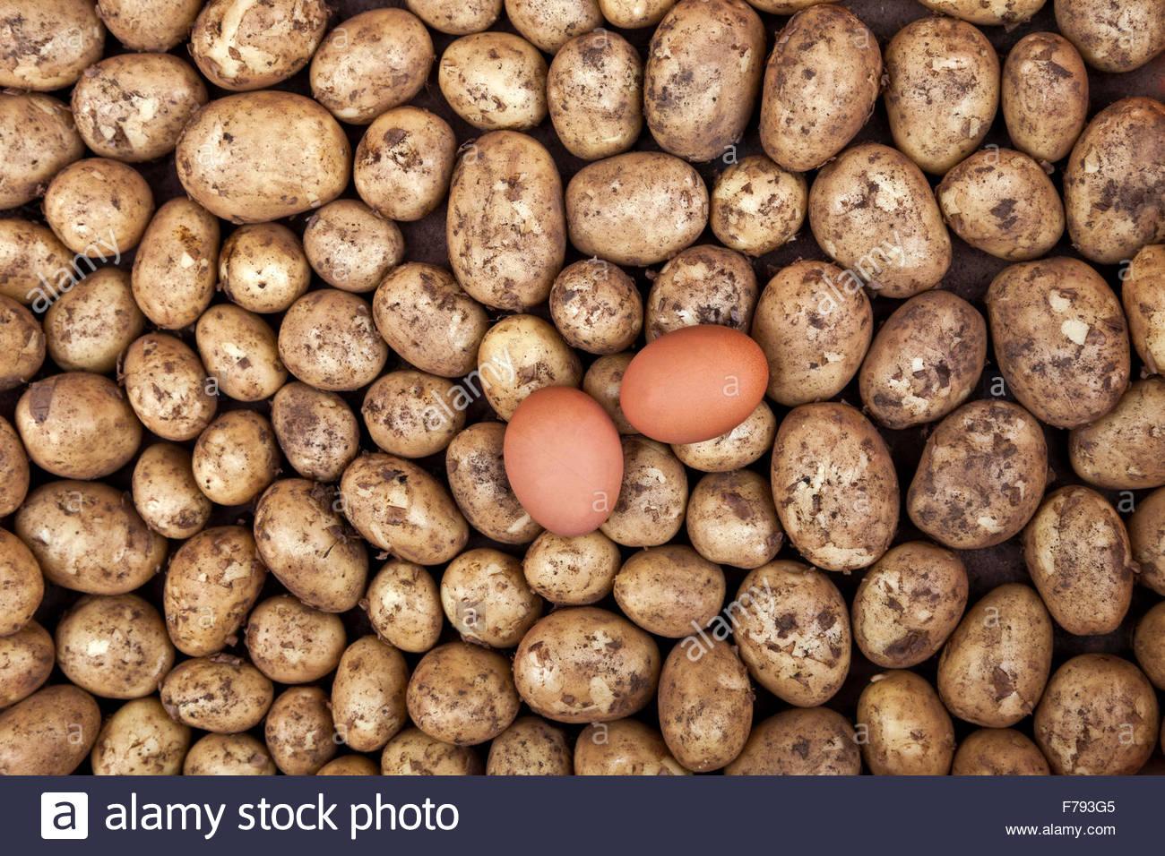 Deux oeufs dans une coquille au-dessus d'un nouveau cru pommes de terre. Les ingrédients pour les oeufs Photo Stock