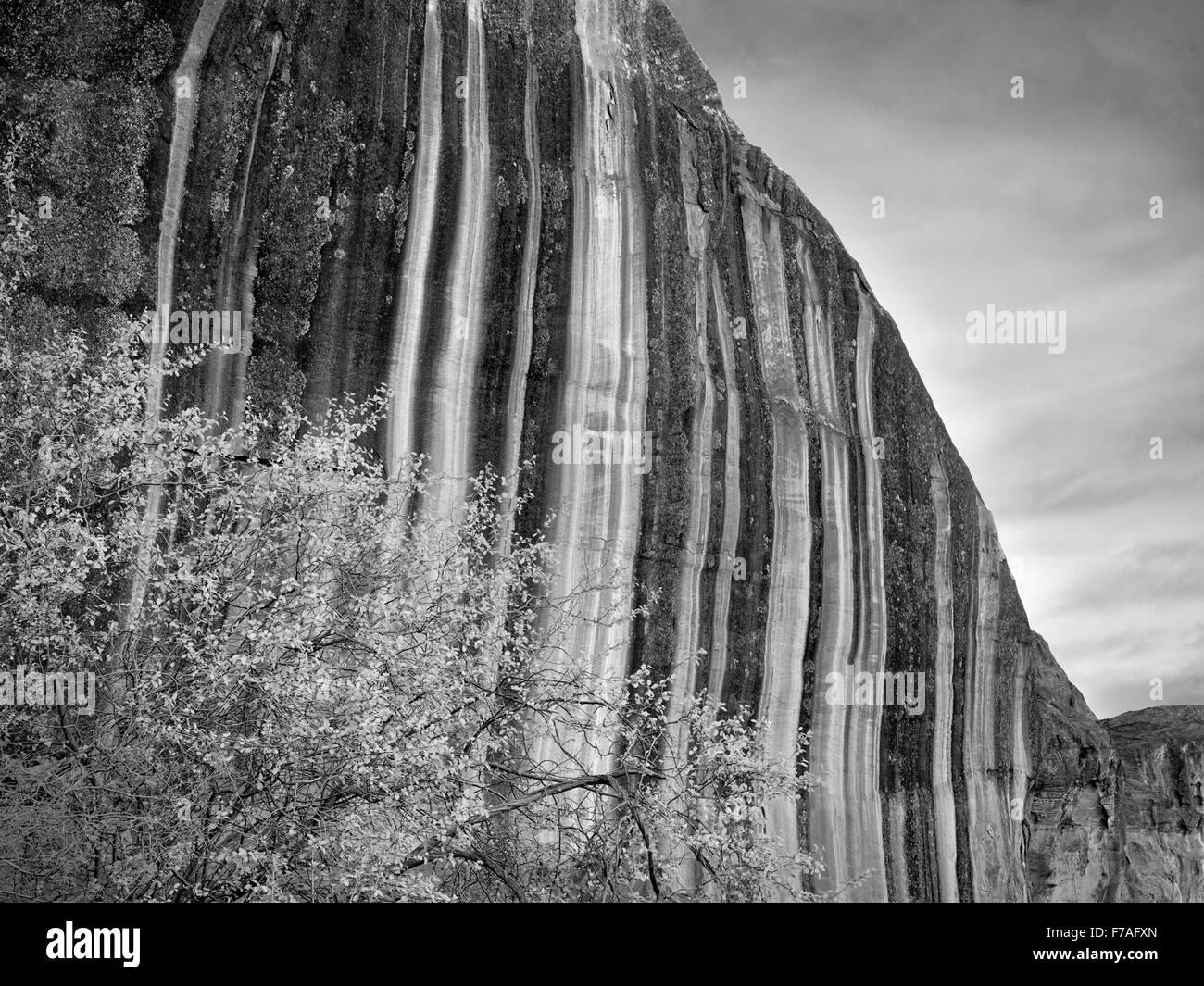 Vernis du désert rock formation à Capitol Reef National Park, Utah Photo Stock