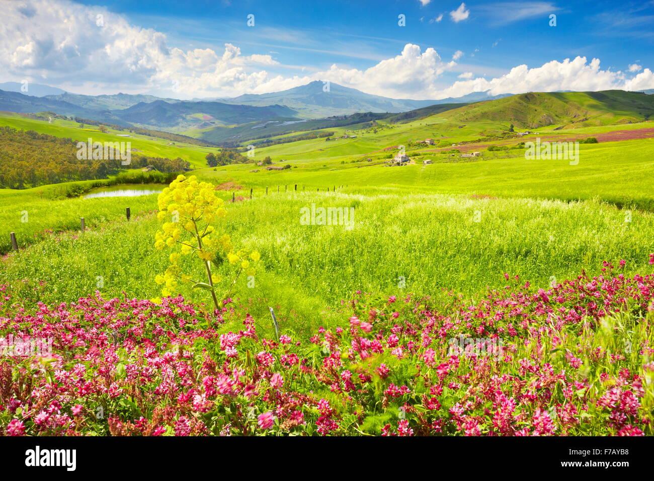 Paysage de printemps avec des fleurs au centre de la Sicile, l'île de Sicile, Italie Photo Stock
