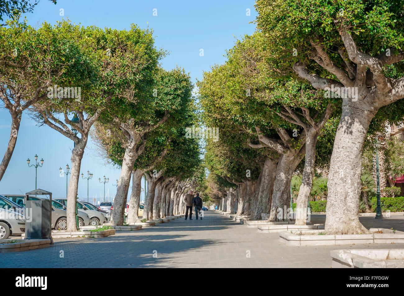 Front de mer de Trapani, un boulevard ombragé au bord de l'eau dans la zone du port de Trapani, en Sicile. Photo Stock