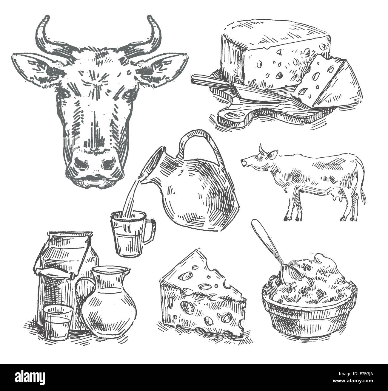 Hand drawn vache, lait, fromage. sketch Photo Stock
