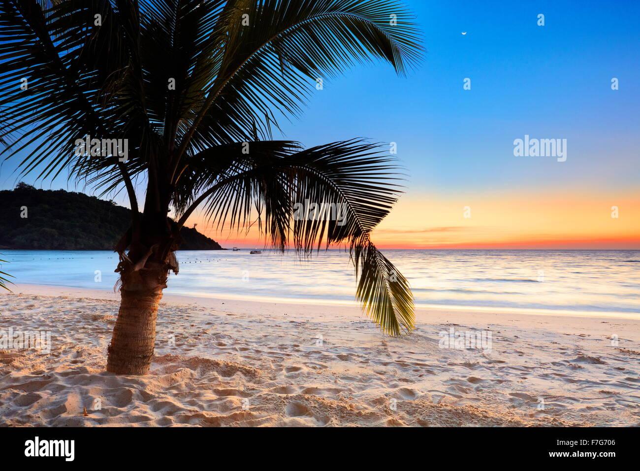 Tropical Beach après le coucher du soleil, l'Île de Ko Samet, Thaïlande Photo Stock