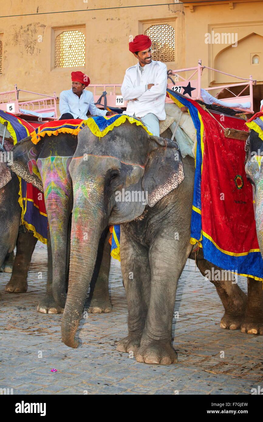 Les éléphants attendent les touristes pour les mener à l'Amber Fort, Amer 11km de Jaipur, Rajasthan, Photo Stock