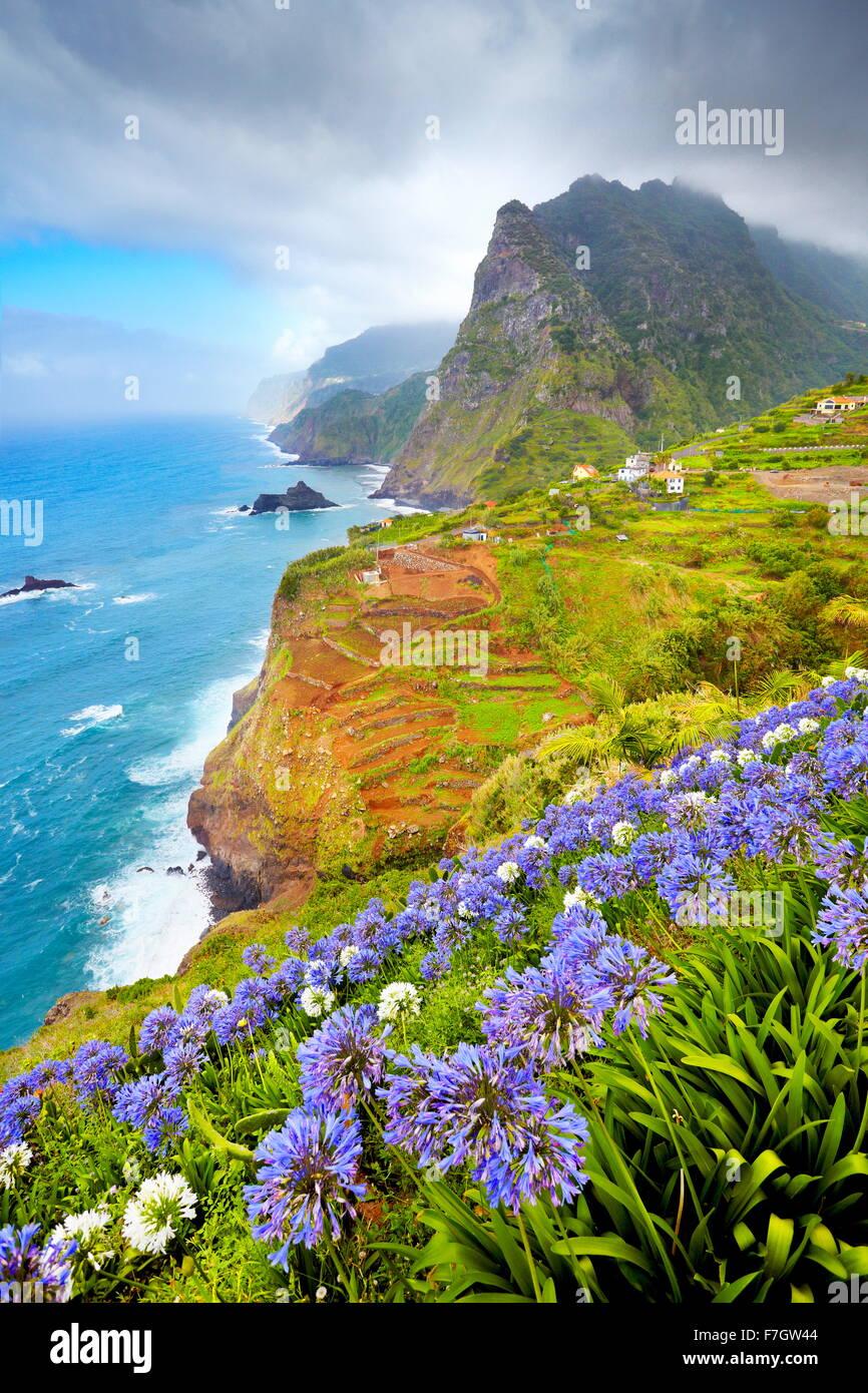 Madère - paysage avec des fleurs près de Ponta Delgada, l'île de Madère, Portugal Photo Stock