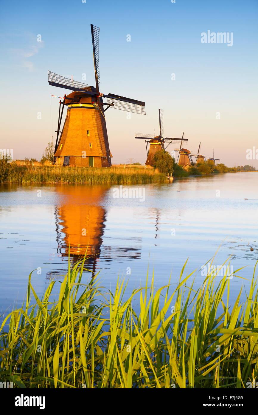 Moulins à vent de Kinderdijk - Hollande Pays-Bas Banque D'Images