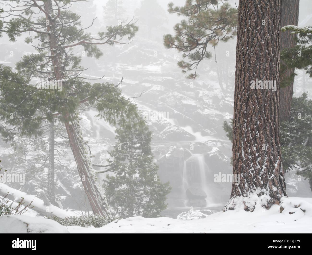 Glen Alpine Falls minutes après les chutes de neige fraîche. Lake Tahoe, California Photo Stock