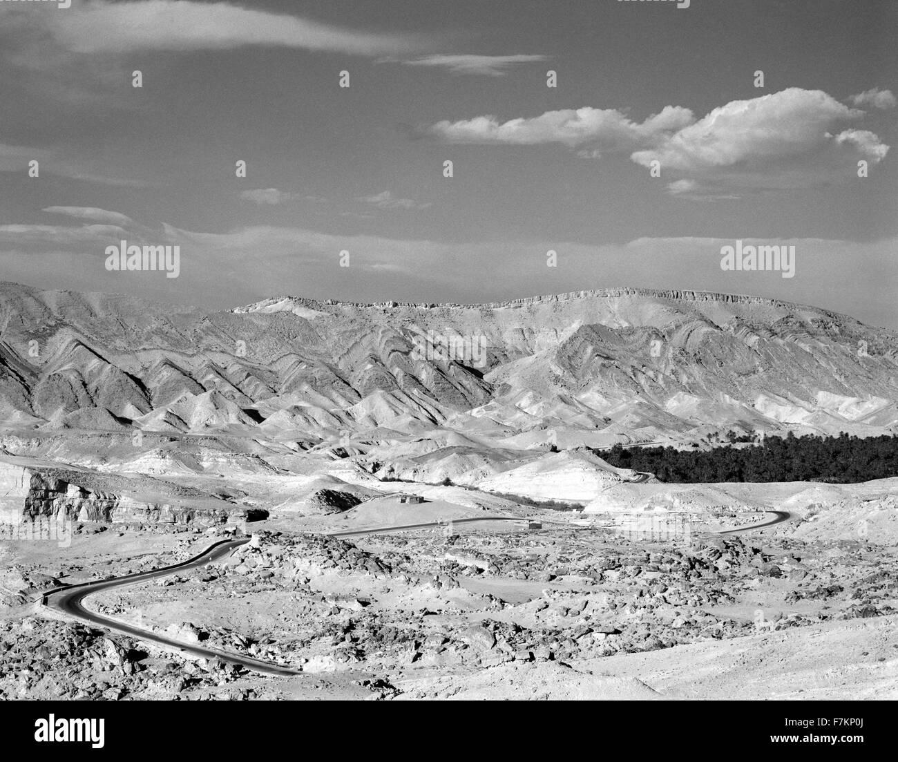 Une Palmeraie remplit le paysage dans la région de Gafsa dans le sud de la Tunisie près de Chitri. La Tunisie. L'Afrique du Nord. Banque D'Images