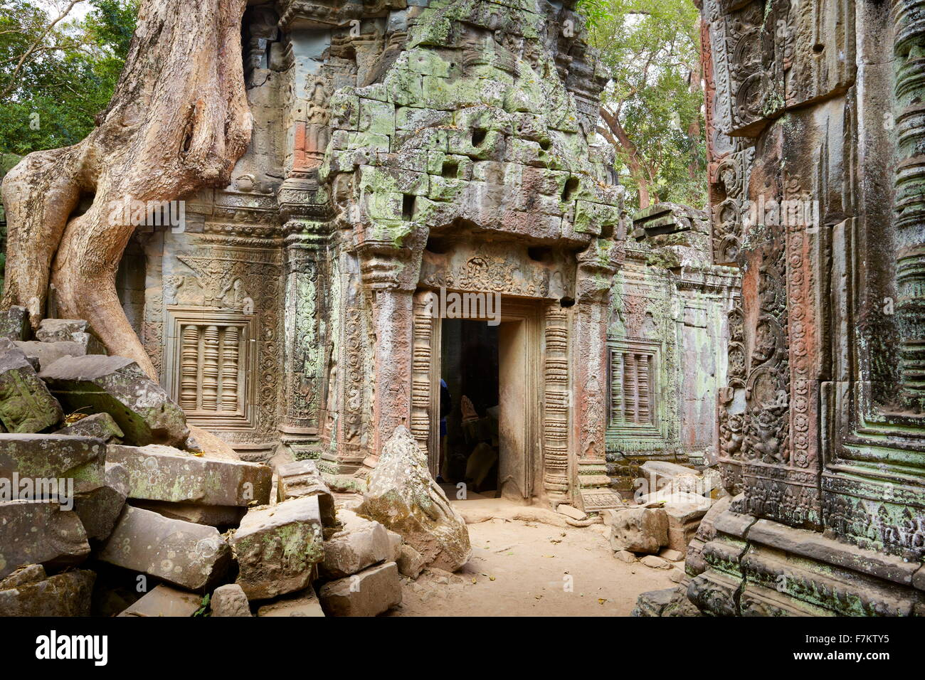 Ta Prohm Temple, Angkor, Cambodge, Asie Banque D'Images