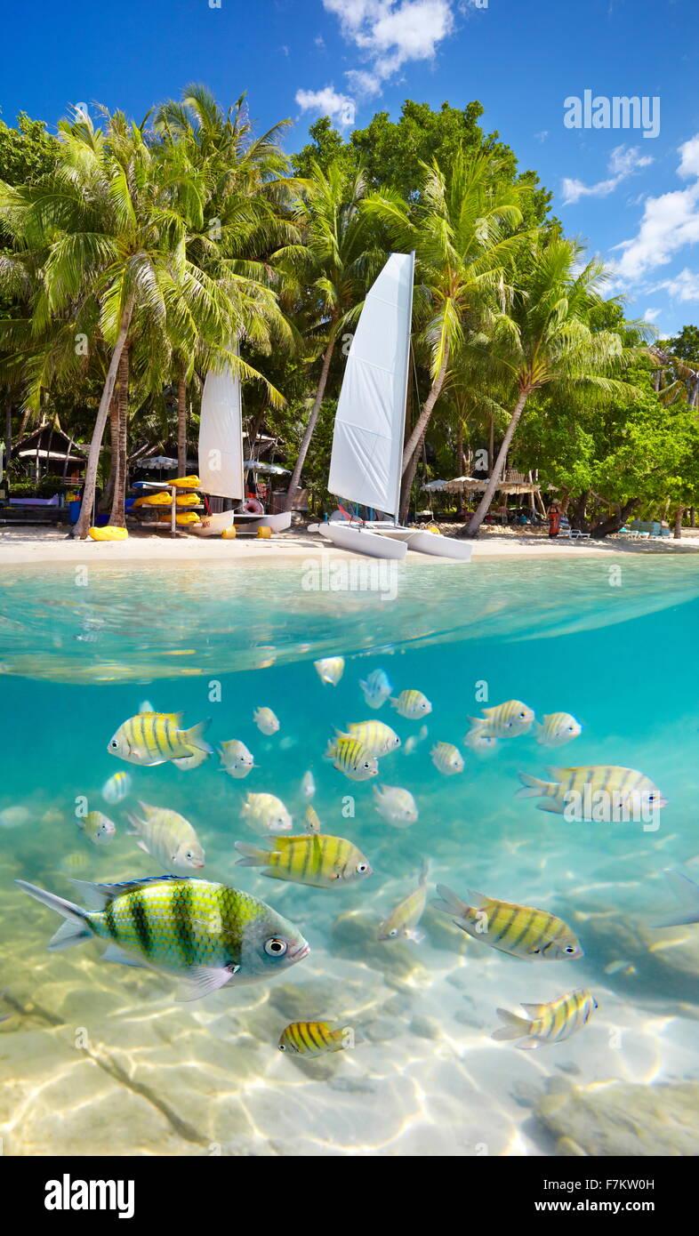 Plage de la Thaïlande et sous-marin sur la mer avec des poissons, l'Île de Ko Samet, Thailande, Asie Photo Stock