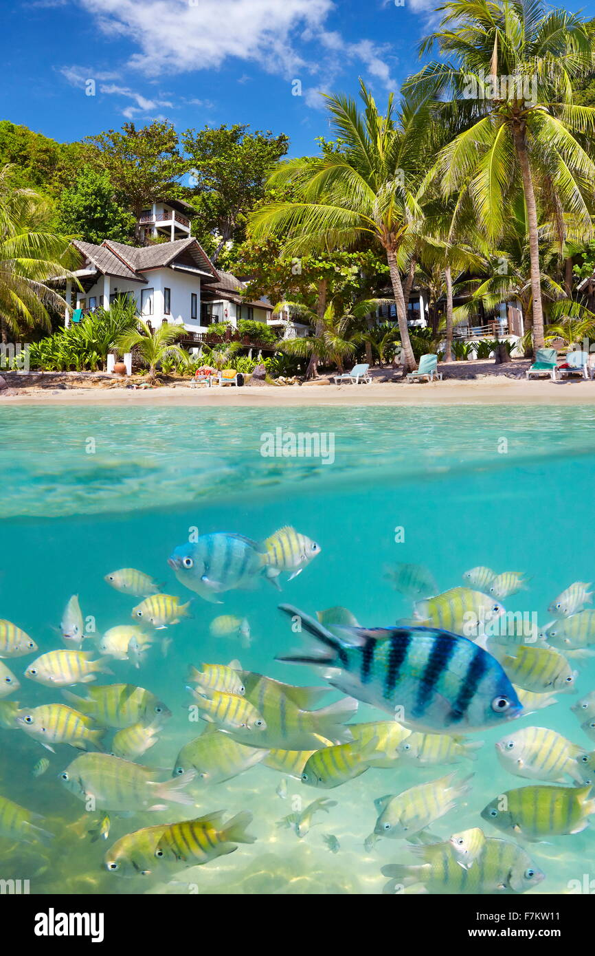 Plage de la Thaïlande, l'Île de Ko Samet, Thailande, Asie Photo Stock