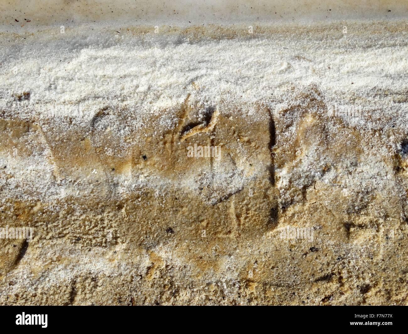 Les dépôts de sel de la mer Morte; Israël 2014 Photo Stock